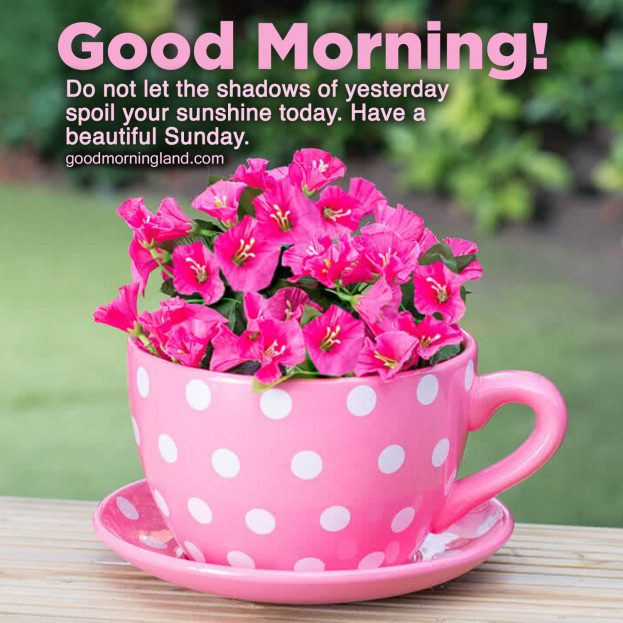Lovely and Good morning Sunday morning images - Good Morning Images, Quotes,  Wishes, Messages, greetings & eCards