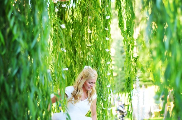 Wedding Weeping Willow