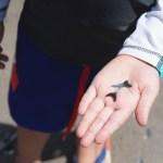 How-To Find Shark Teeth on St Simons Island