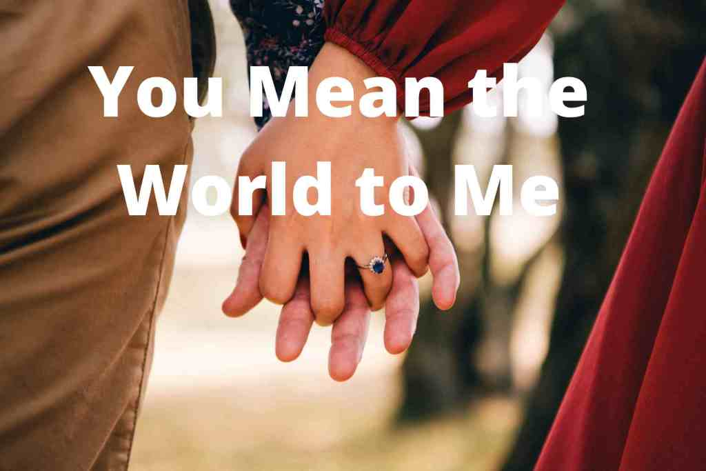 You Means the world to me