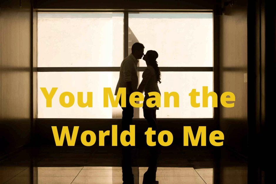 Best 'You Mean The World To Me' Quotes Image 3