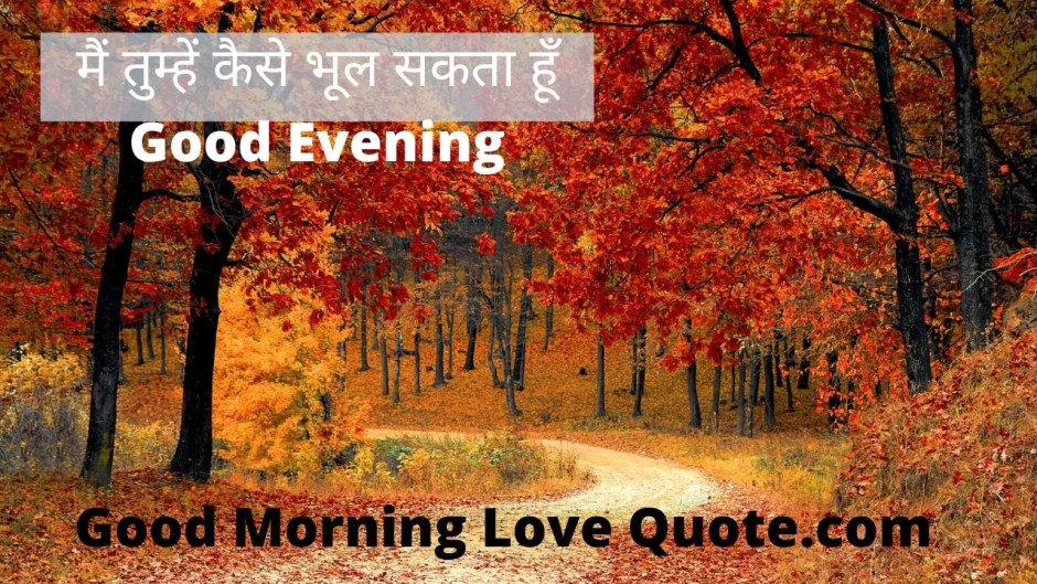 5 Sad Good Evening Hindi Image