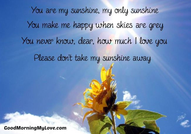 you-are-my-sunshine-love-quotes-for-him
