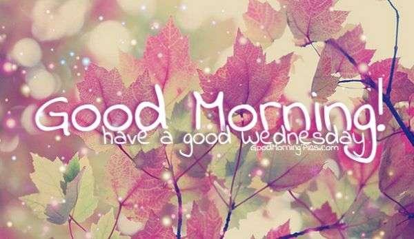 Have a Good Wednesday  goodmorningpicscom