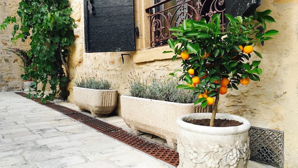 belle cour maison hote beaujolais