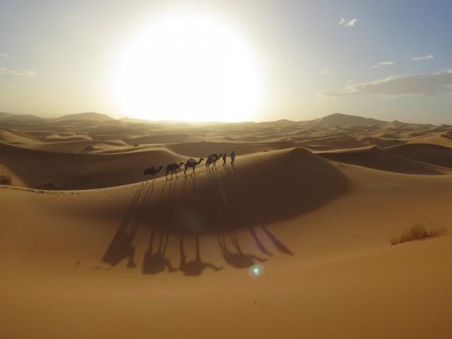 Ervaar Marokko Cruise Desert Sahara bestemmingen september