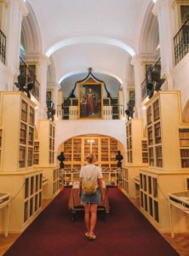 Targu Mure's bibliotheek