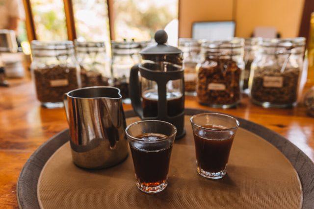 Koffie Luwak