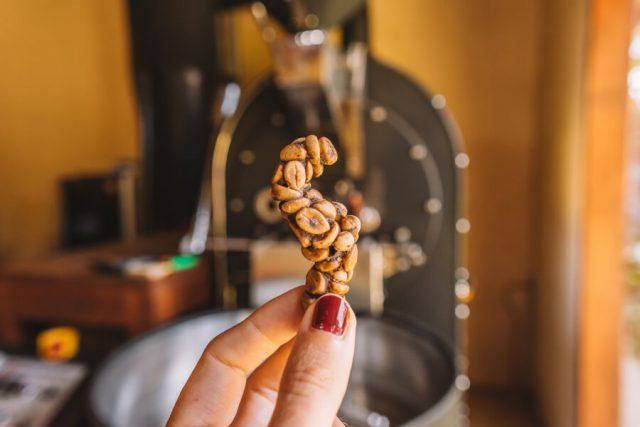 Munduk Bali Luwak koffie