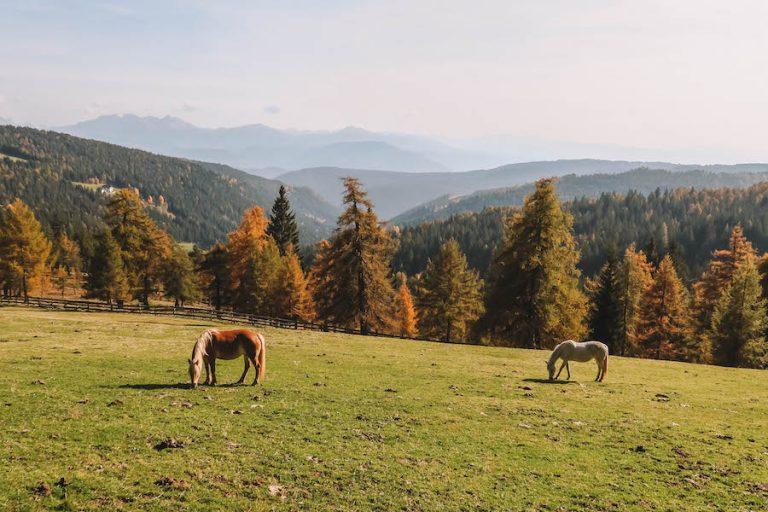 Jesen Zuid-Tirol