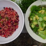 beetroot fennel quinoa pilaf with a leafy lemon garden herb salad
