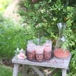 rhubarb rose sparkle