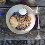 fig and ginger cluster granola