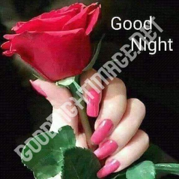 Latest Good Night Photo Download