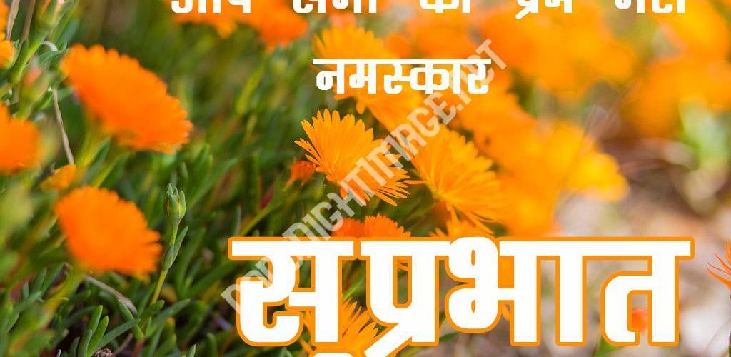 499+ गुड मॉर्निंग फोटो वॉलपेपर डाउनलोड इन हिंदी (Good Morning Wallpaper In Hindi ) - Good Morning Images   Good Morning Photo HD Downlaod   Good Morning Pics Wallpaper HD