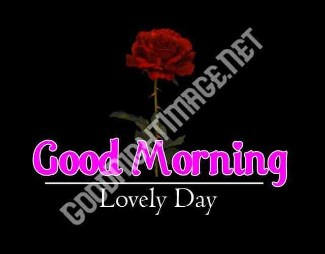 Beautiful Good Morning 4k Images Download For GF / Friend
