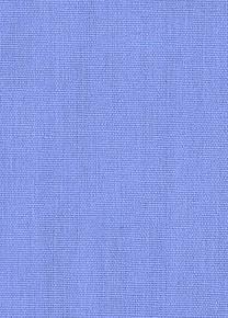 bluebonnet
