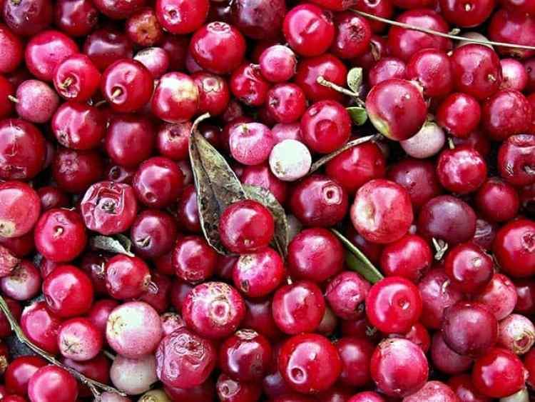DIY Sugar Scrubs include cranberries