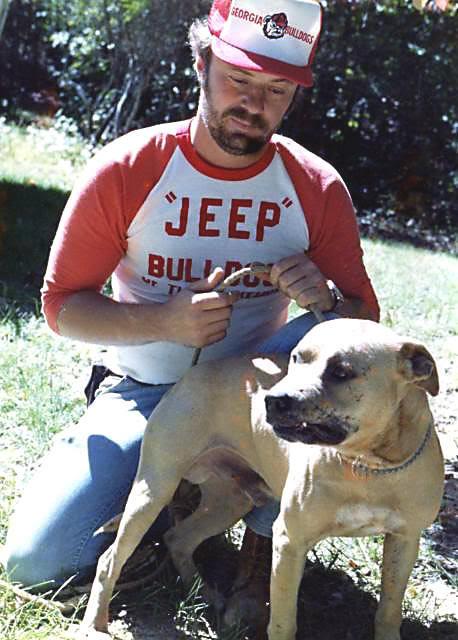 Jeep Pitbull Bloodlines : pitbull, bloodlines, History, Bloodline, Bulls