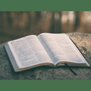 詩篇  第十六篇