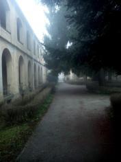 altrove-esterno-nebbia-13