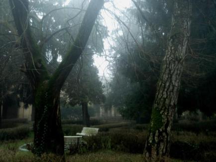 altrove-esterno-nebbia-8