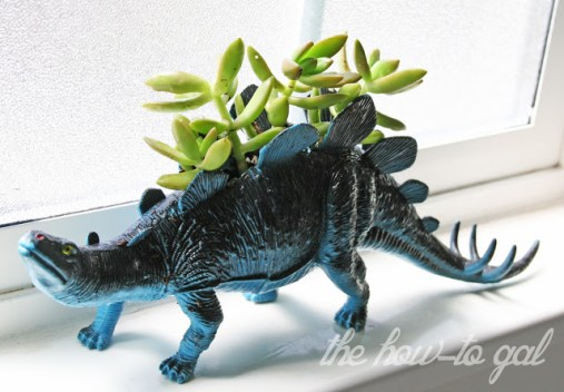 Even the kids toys aren't safe from these roaming succulents...