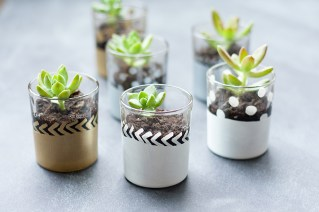 Decorate little shot glasses with fun inky paint pens.