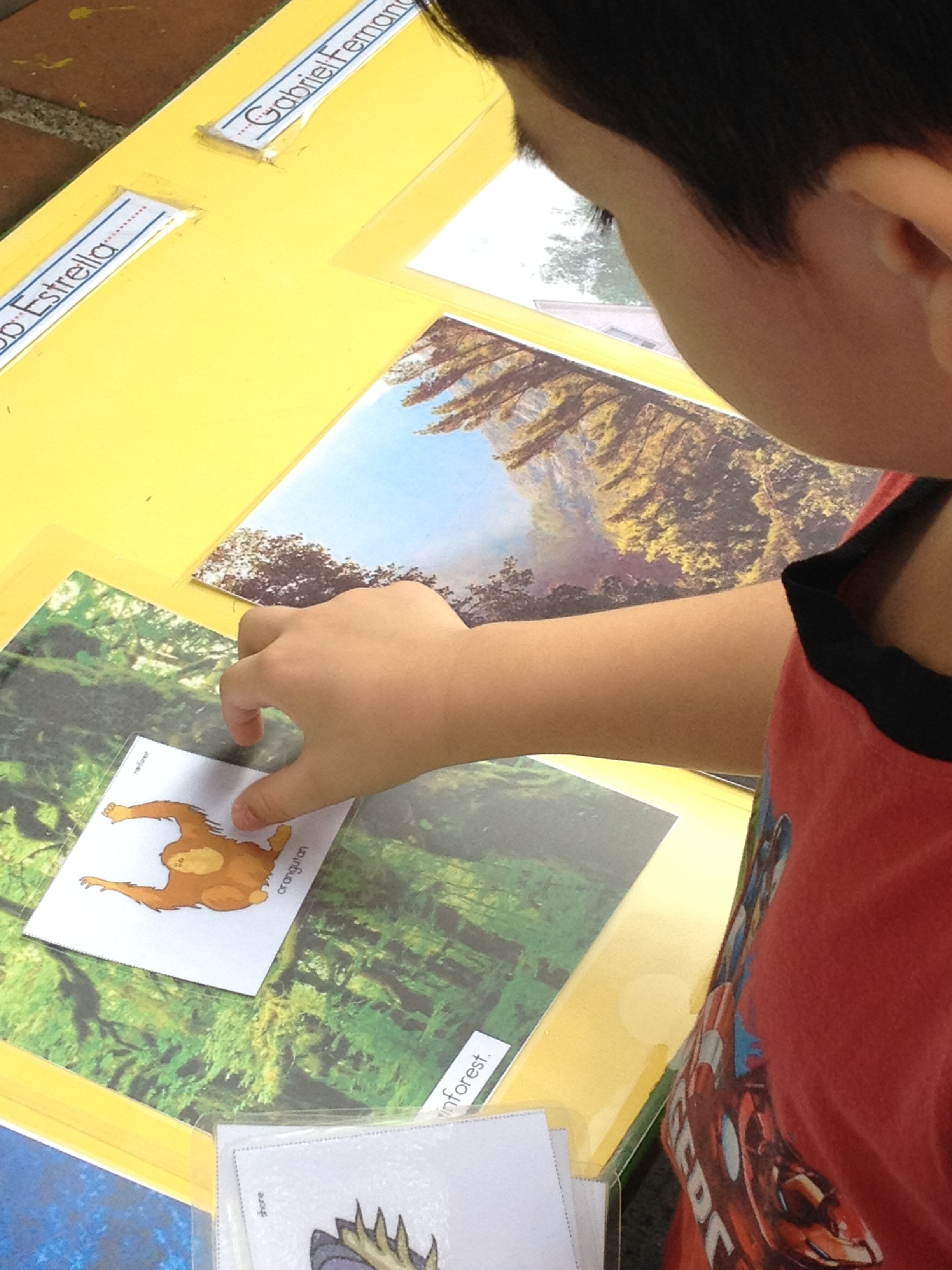 100 Original Papers Amp Critical Thinking Kindergarten
