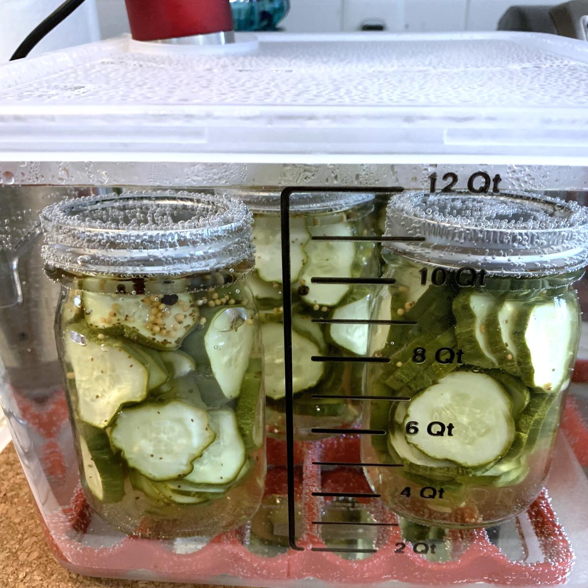 Sous vide pickles 1200