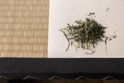 Sencha tea tasting experience