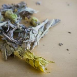cleanse tea tea stories