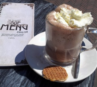 My hot chocolate with cream topping and honey cookie