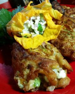 Goat cheese and bunapi mushroom stuffed squash blossoms.