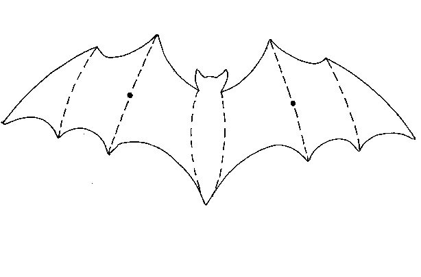 How to make a Halloween bat mobile