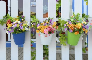 10 Cheap Ways To Spruce Up Your Garden Colour It In Goodtoknow