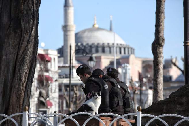 terrorism and tourism's diabolocal relationship; an example