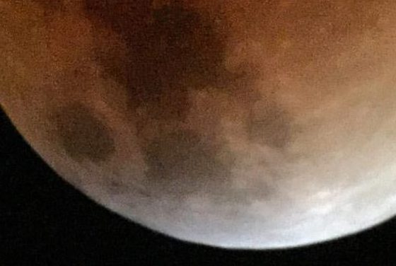 Lunar eclipse photo taken by my son with iPhone and telescope