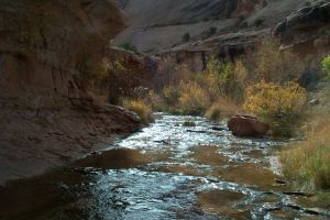 bills-canyon