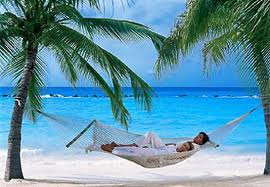 Activate the Vibration of Dream Vacation