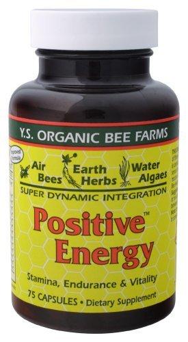 YS Organics Royal Jelly/Honey Bee – Positive Energy, 75 capsules