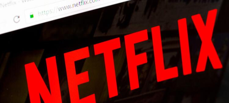 GOOSE VPN Netflix
