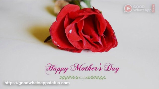 Wish You a Very Happy Mother's Day