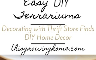 Spring Home Project – Easy DIY Terrarium