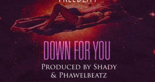 Freebeat: Down For You – Fireboy DML Type Beat (Prod by Shady & Phawelbeatz)