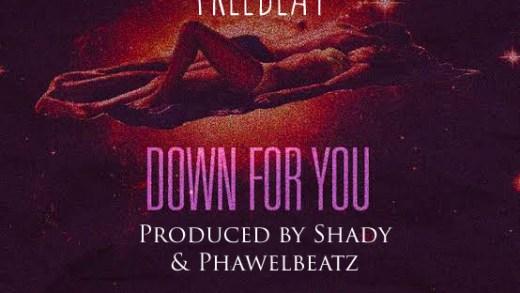 Freebeat: Down For You – Fireboy DML Type Beat (Prod by Shady & Phawelbeatz)