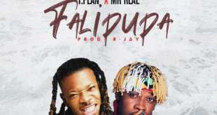 TPlan ft. Mr Real - Falipupa