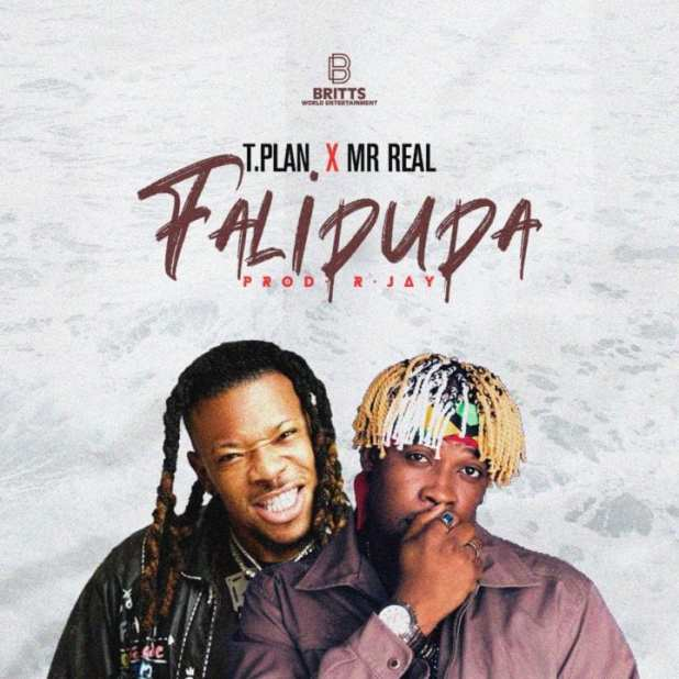 TPlan ft. Mr Real - Falipupa