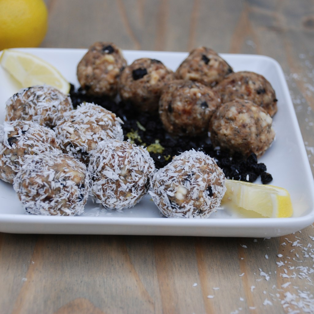Wild Blueberry Lemon Bites