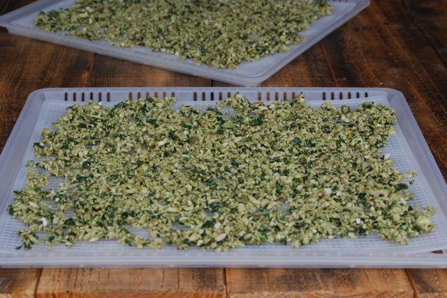 Oscar Worthy Nutty Kale Popcorn